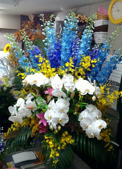 東大阪市政50周年 おめでとう!